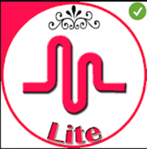 musical.ly Lite APK