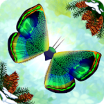 Download Flutter: Butterfly Sanctuary APK