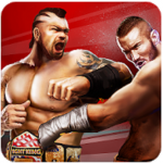 Champion Fight 3D APK + MOD
